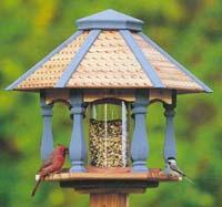 Selecting A Bird House