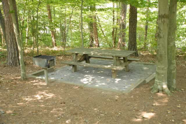 Picnic Areas Lake Norman State Parks