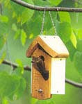 {Bird house image}