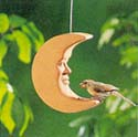 {Bird on moons image}